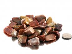Petrified Wood Tumbled Stones - 1 lb